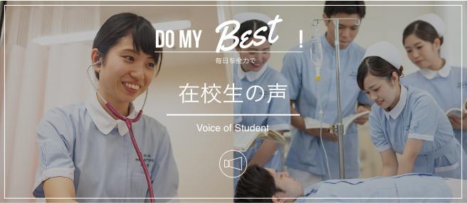 在校生の声